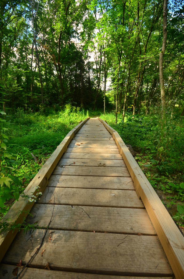 Boardwalk on the IAT