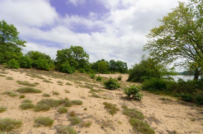 Sand Terrace