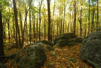 Outcropping in Fall