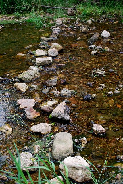 Crossing Honey Creek