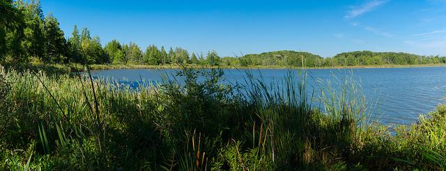 Bean Lake