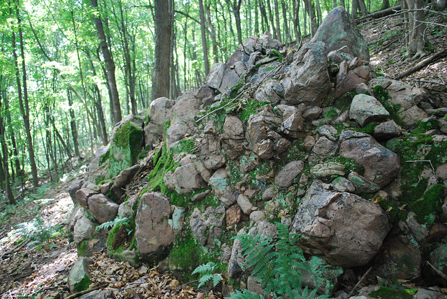 Quartzite Outcrop