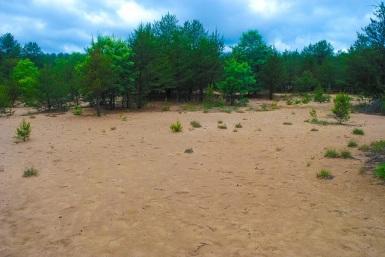 Sand Blow