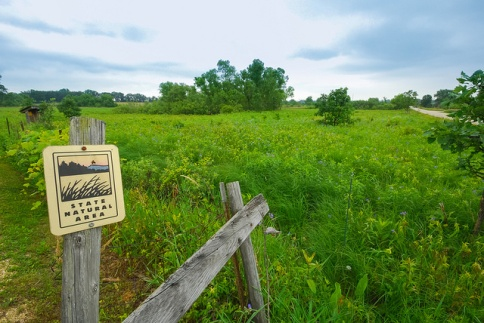 Wet-Mesic Prairie