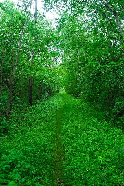 Access Lane