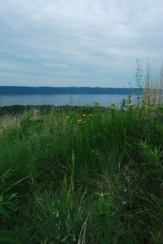 Prairie & Overlook