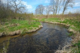 Chaffee Creek