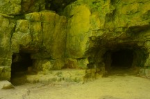 Crevices & Caves