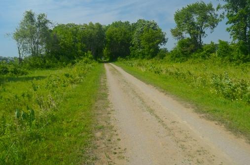 Wet Prairie & Trail