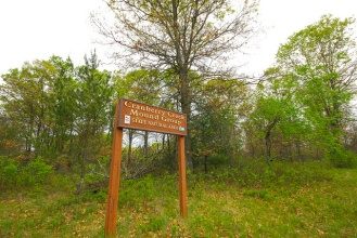 Sign in the Forest