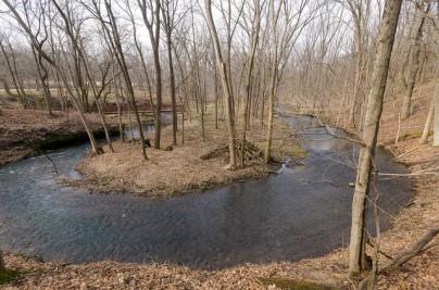 Water & Woods in Spring